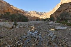 Ландшафт горы пустыни стоковые фотографии rf