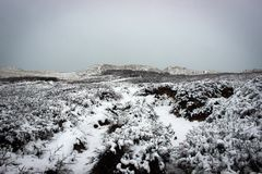Сценарный ландшафт около маяка к зима, Дании Rubjerg Knude Стоковое Фото