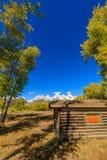 Сценарный ландшафт осени в Tetons Стоковые Фото