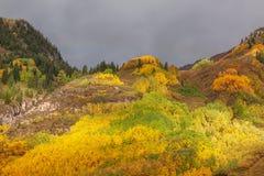 Сценарный ландшафт осени Колорадо Стоковая Фотография RF