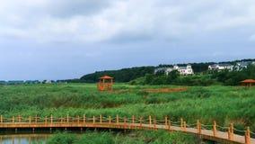Сценарный ландшафт парка 3 заболоченного места ai hu ` Hsing-K Стоковое Изображение RF