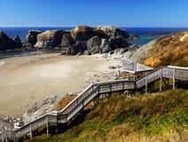 Сценарный ландшафт следа Тихоокеанского побережья Орегона Стоковые Фотографии RF