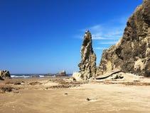 Сценарный ландшафт следа Тихоокеанского побережья Орегона Стоковое фото RF