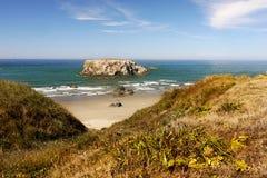 Сценарный ландшафт следа Тихоокеанского побережья Орегона Стоковое Фото