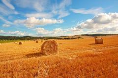 Сценарный ландшафт с haybales Стоковые Изображения RF