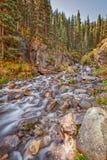 Сценарный поток горы в осени Стоковая Фотография RF