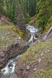 Сценарный поток горы в падении Стоковая Фотография