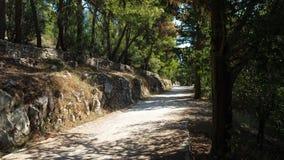 Сценарный путь в спокойном парке в разделении, Хорватии стоковое фото rf