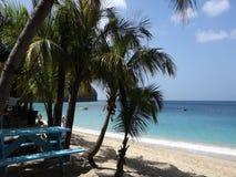 Сценарный пляж в Вест-Инди видеоматериал