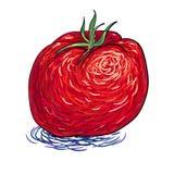 Сценарный томат Стоковые Фото