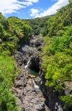 Сценарный тропический ландшафт водопада около Ганы Мауи Стоковое Изображение RF