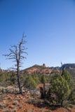 Сцена ландшафта пустыни Аризоны высокая Стоковое Изображение RF