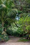 Сцена 1 ботанического сада Стоковое Фото