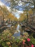 Сцена весны в городе Амстердама перед днем ` s короля, Koningsdag Стоковые Изображения