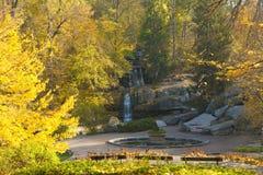 Сцена водопада в парке осени Стоковая Фотография