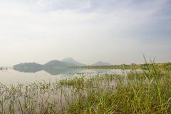 Сцена в резервуаре Стоковое Изображение RF