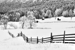 Сцена в Румынии, красивый ландшафт зимы одичалых прикарпатских гор Стоковое Изображение RF