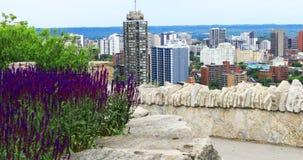 Сцена Гамильтона, Канады, центра города с цветками в переднем 4K сток-видео