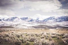 Сцена горы пустыни стоковая фотография rf