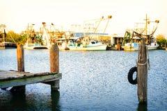 Сцена заболоченного рукава реки Луизианы стоковое фото rf