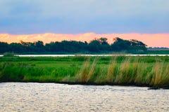 Сцена заболоченного рукава реки Луизианы стоковая фотография rf