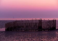 Сцена захода солнца и bampoos в море на воссоздании Bangpu стоковые фотографии rf