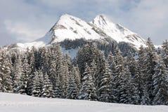 Сцена зимы, Австрия Стоковое Изображение