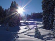 Сцена зимы Альпов швейцарца Стоковая Фотография