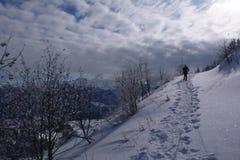 Сцена зимы Альпов швейцарца Стоковое фото RF