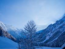 Сцена зимы в Allgau Альпах около Оберстдорфа, Германии Стоковая Фотография