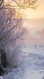 Сцена зимы на голландском dike Стоковые Фото