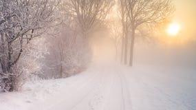 Сцена зимы на голландском dike Стоковая Фотография