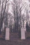 сцена зимы сельская с стробами снега и кладбища - годом сбора винограда ретро Стоковое фото RF