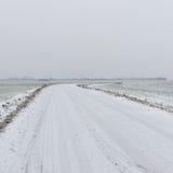 Сцена зимы сельская с туманом и белыми полями Стоковое фото RF