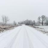 Сцена зимы сельская с туманом и белыми полями Стоковые Изображения RF