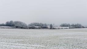 Сцена зимы сельская с туманом и белыми полями Стоковая Фотография RF