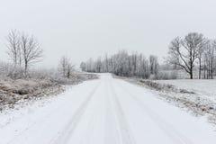 Сцена зимы сельская с туманом и белыми полями Стоковое Изображение RF