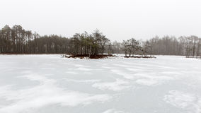 Сцена зимы сельская с туманом и белыми полями Стоковое Фото
