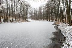 Сцена зимы сельская с туманом и замороженным рекой Стоковые Фото