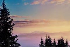 Сцена зимы с заходом солнца в красивом ландшафте зимы с снегом покрыла деревья Стоковые Изображения RF