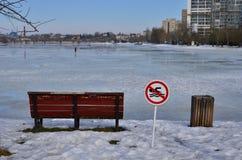 Сцена зимы с озером города Стоковая Фотография