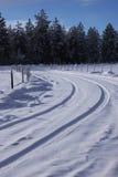 Сцена зимы. Стоковое фото RF