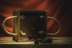 Сцена конспекта вишни натюрморта Стоковые Изображения