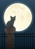 Сцена кота хеллоуина Стоковые Изображения RF