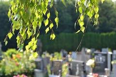 Сцена кладбища стоковое изображение rf