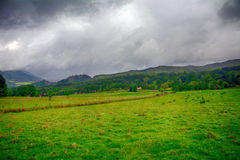 Сцена ландшафта гористой местности, Kilmahog, Шотландия Стоковое Изображение
