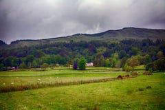 Сцена ландшафта гористой местности, Kilmahog, Шотландия Стоковые Фото