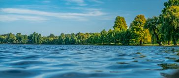 Сцена лета на озере стоковые изображения