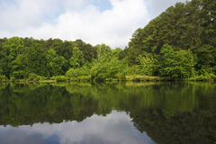 Сцена озера Стоковое Фото