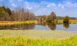 Сцена осени на озере стоковая фотография rf